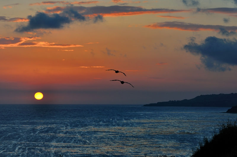 Pt. Vicente Sunset