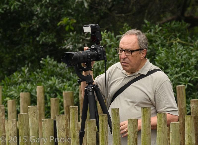 Marko Milazzo at the Alligator Farm