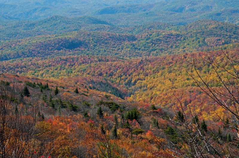 North Carolina Mountains in Fall