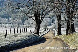Frosty Hyatt Lane (ericbowles)