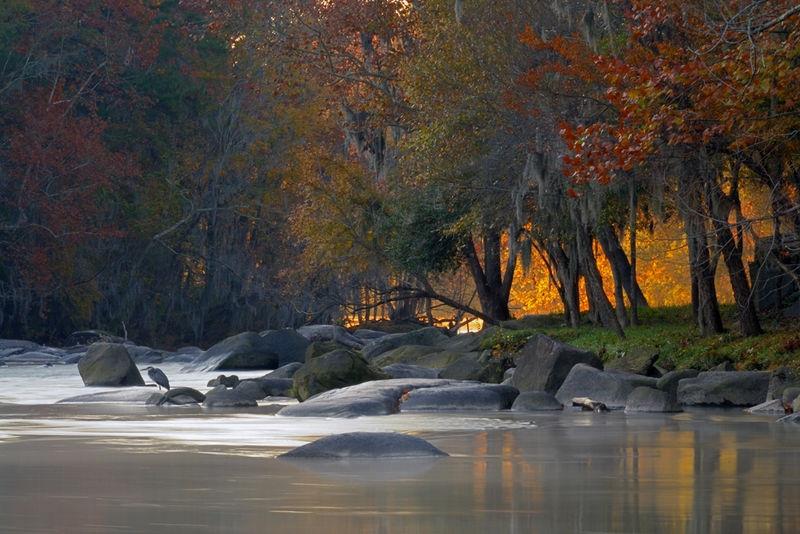 """Gold on the Lower Saluda,"" South Carolina"