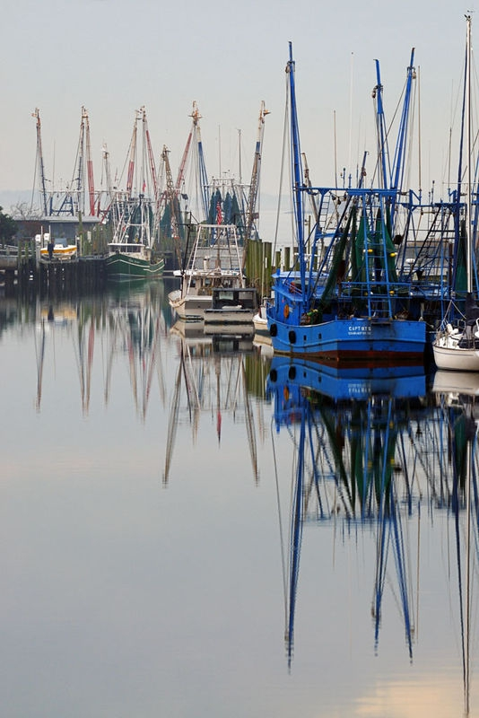 """Reflections on Shem Creek"""