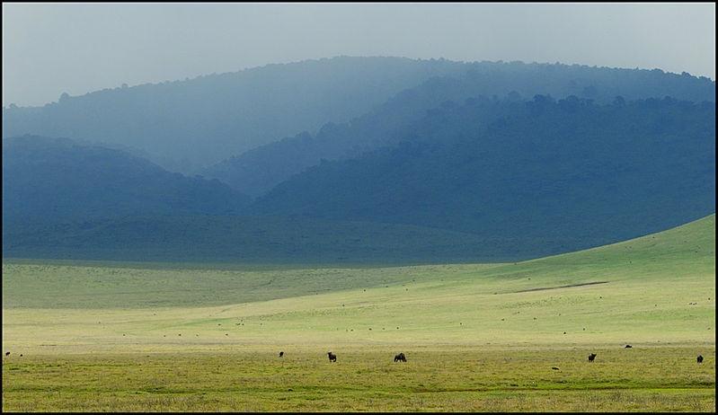 Rain in the Ngorongoro