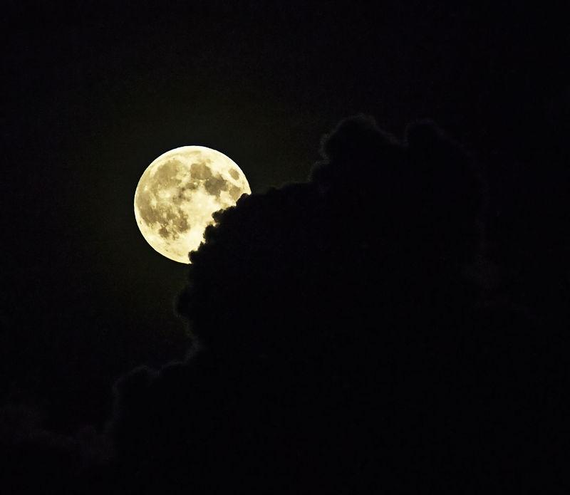 Moon peeking