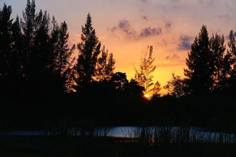 Delray Park West Sunset