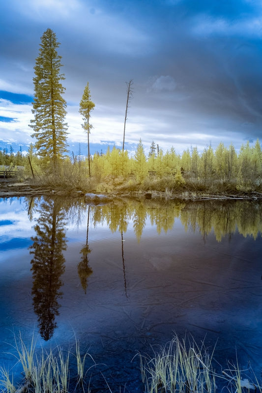 String Lake Reflections in Infrared