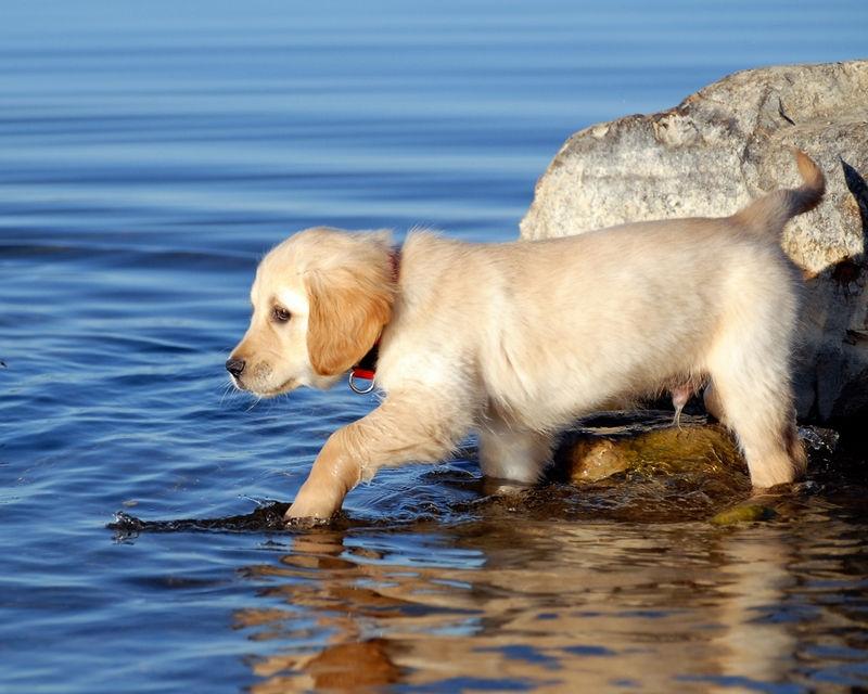 Spencer's Water Worries