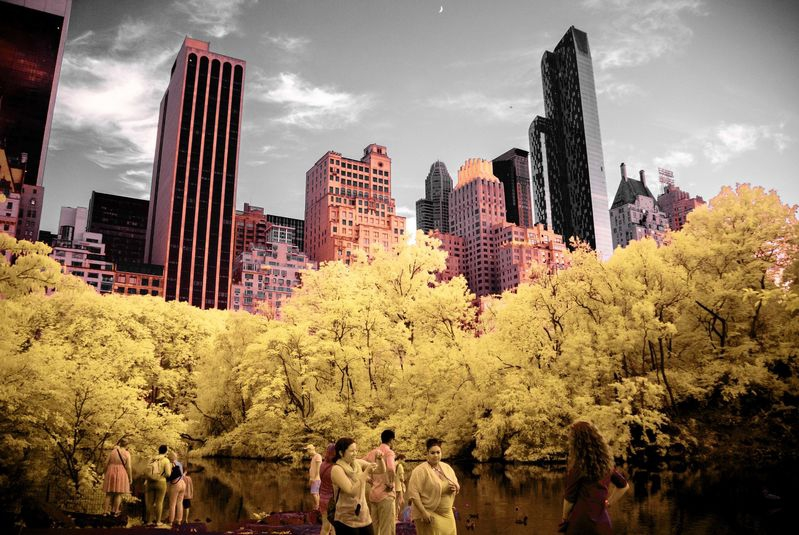 NYC_from_CENTRAL_PARK_