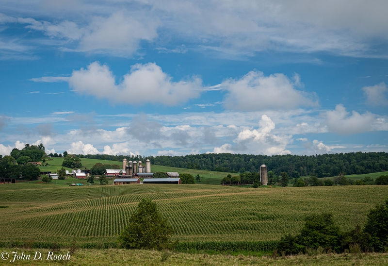 Farm Country, Virginia