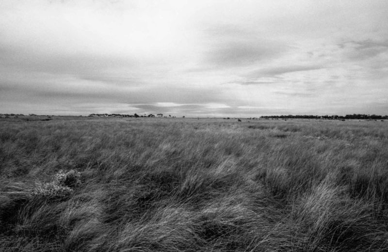 Grasslands_Point_Cook.jpg