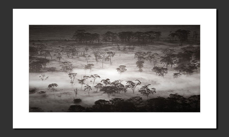 Ngogongoro Crater