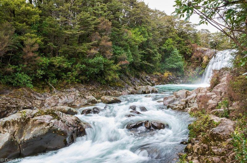 Tawhai Falls Tongariro National Park New Zealand