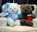 Flash Guide - The Teddy Bears Test
