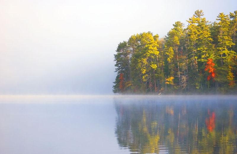 Morning Mist in Autumn