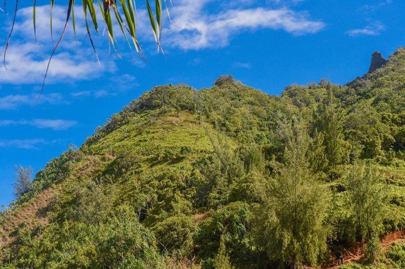 Terrestrial Scenery,Kalalau Trail,Kauai