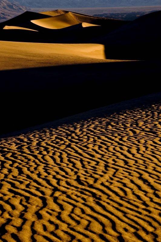 Dunes at first light