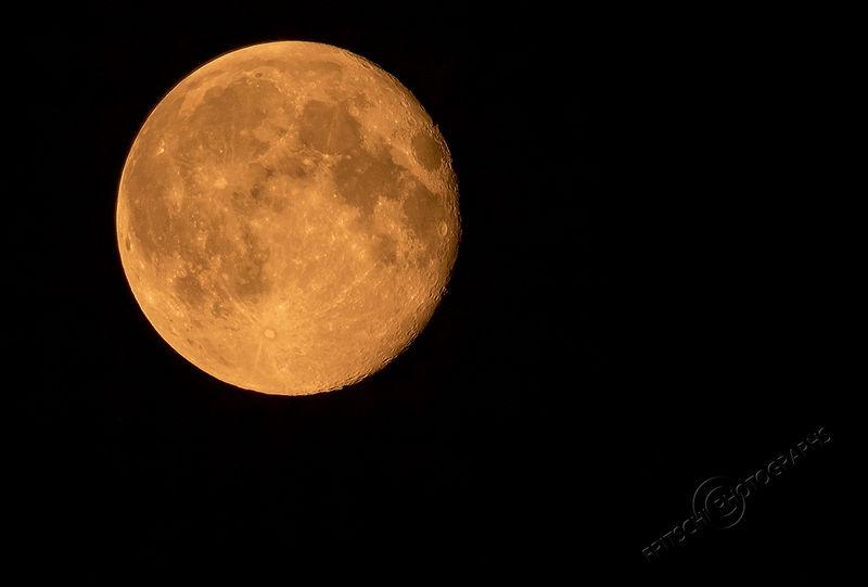 Super Moon August '14