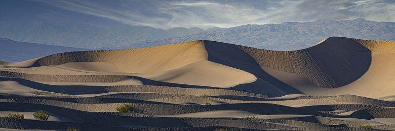 Walker in Mesquite Dunes panorama
