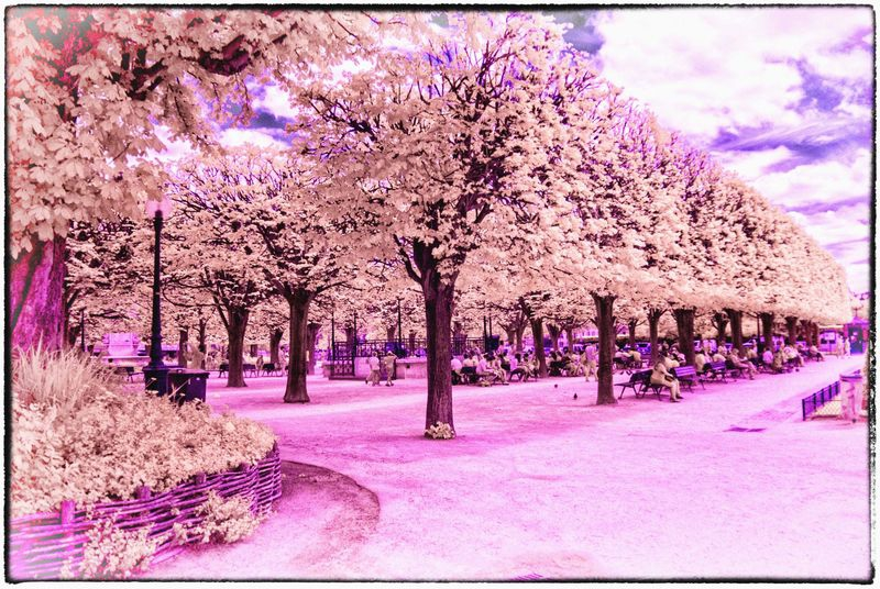 PUBLIC_PARK_PARIS_2015