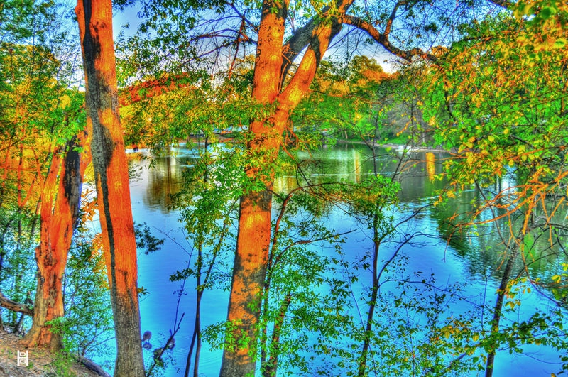 Park_lake_bright_HDR