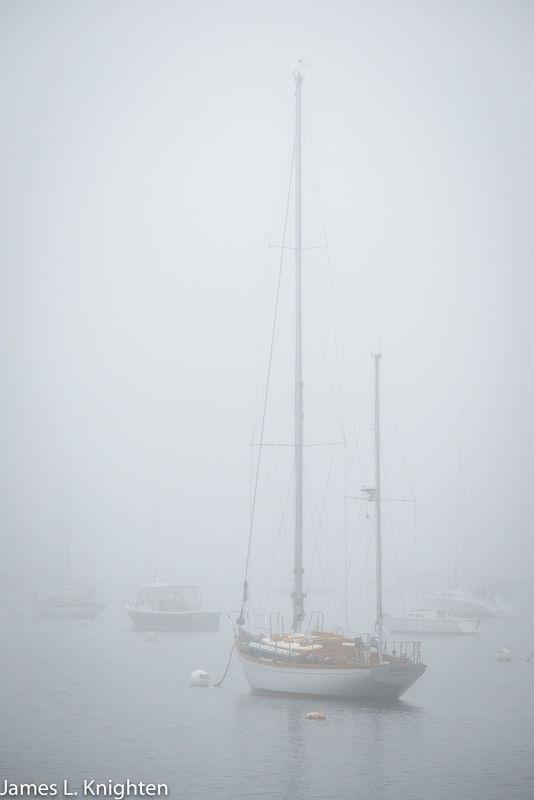 Rockport Harbor in fog