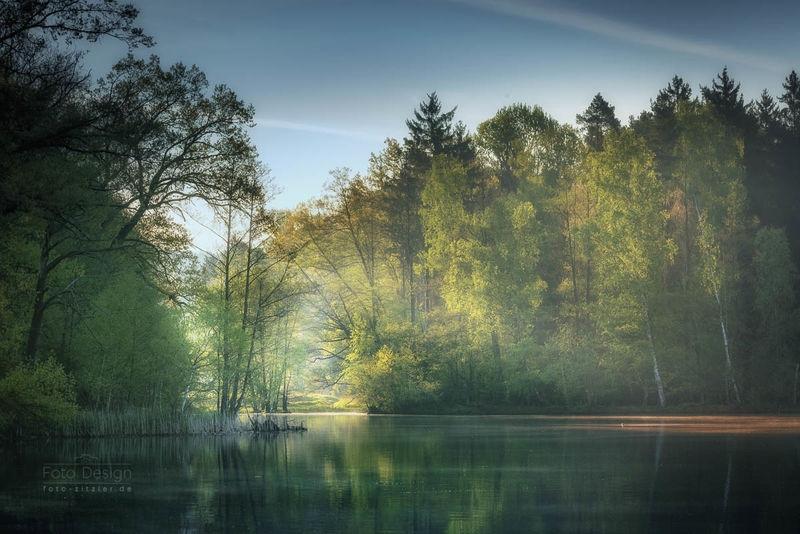 lake 9559