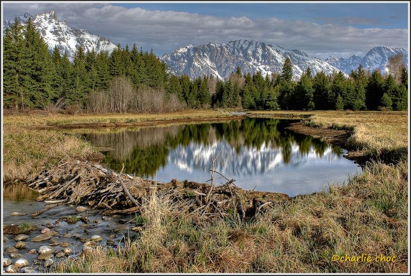 Teton beaver pond HDR