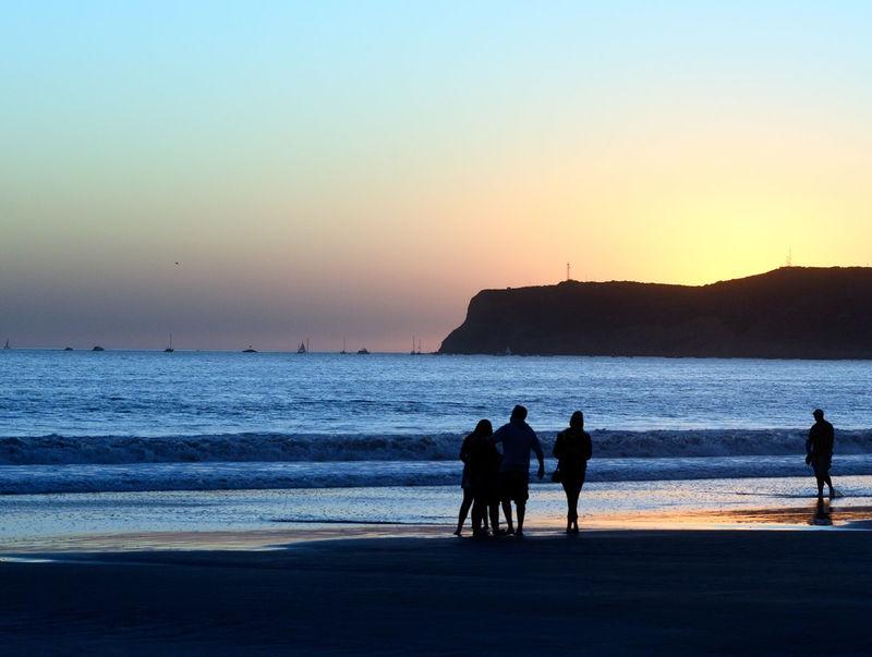 Dog days over ,sunset