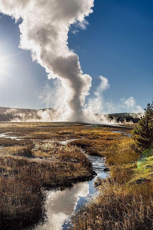 Geyser of Yellowstone