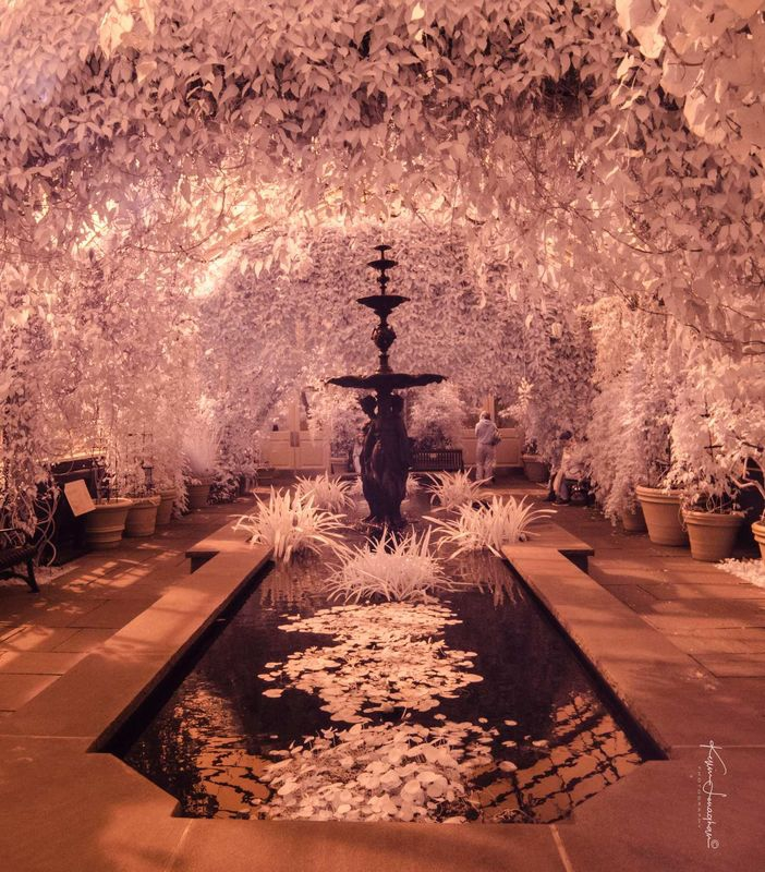 Fountain in New York Botantical Garden Consevatory