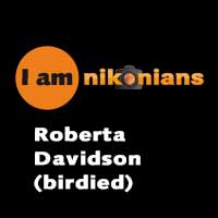 I Am Nikonians – Roberta Davidson (birdied) Interview