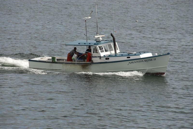 Lobster Fisherman, Frenchman's Bay, Bar Harbor, Maine