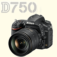 Nikon D750 Initial Impressions - User Review