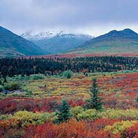 Treasured Lands – A Journey Through America's National Parks
