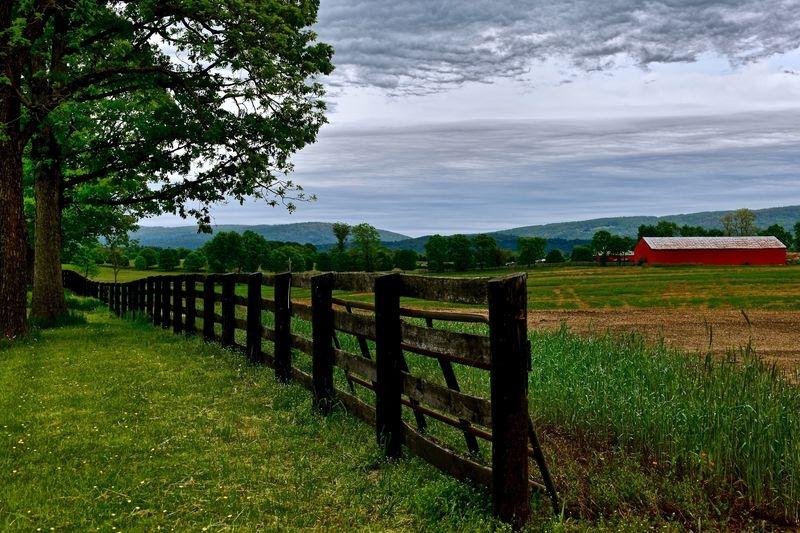 Fences, Trees, Mountains