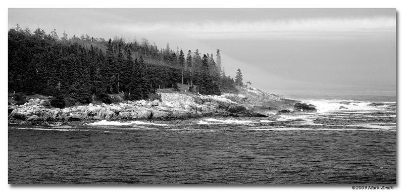 Mist at Acadia