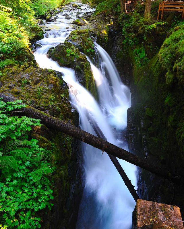 The Classic View at Sol Duc Falls