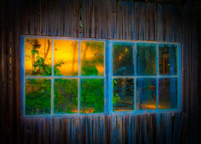 WINDOW IN A FENCE