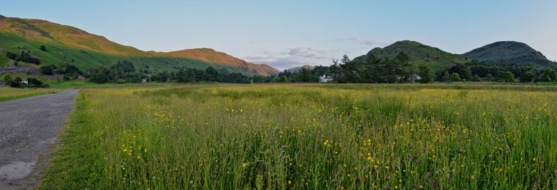 Meadow in Lake District, Cumbria