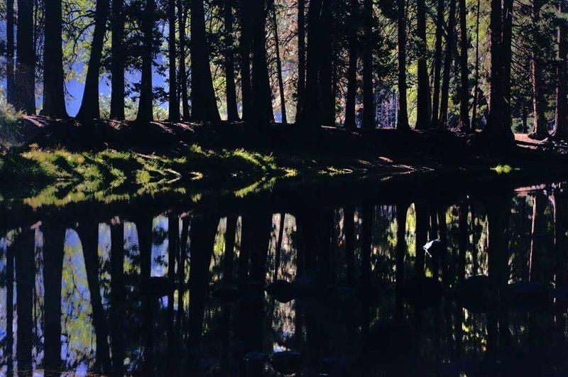 ANPAT8 Yosemite