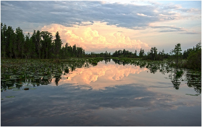 Okefenokee Swamp-Sunset