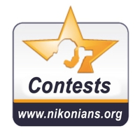 About our Contest Team