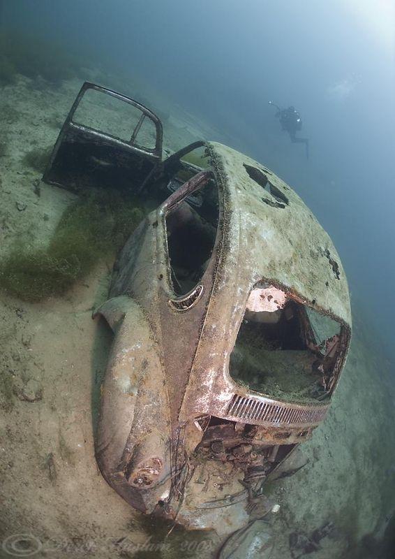 VW Bettle.