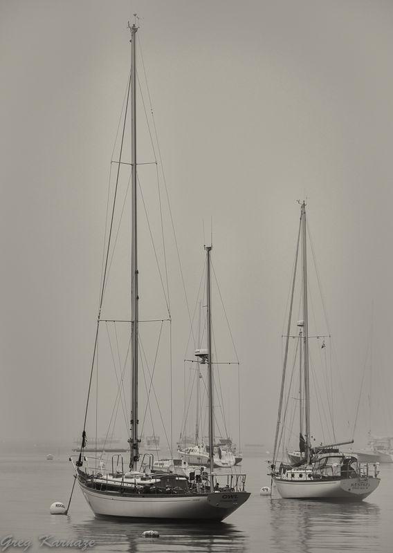 Sailboats-B_W-2
