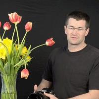 Nikon D800 initial testing (video)