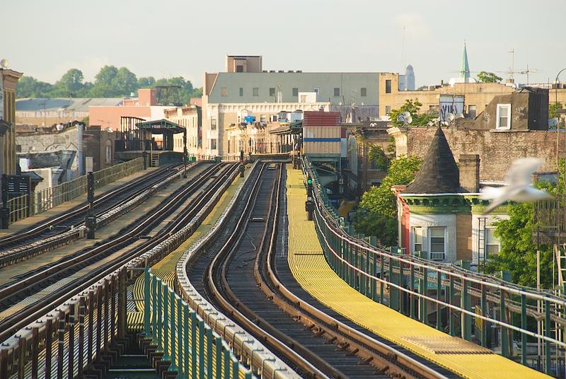 D Train Landscape