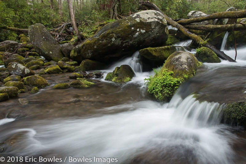Roaring Fork streams