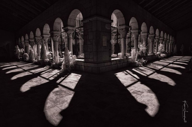 Cloisters Coutyard