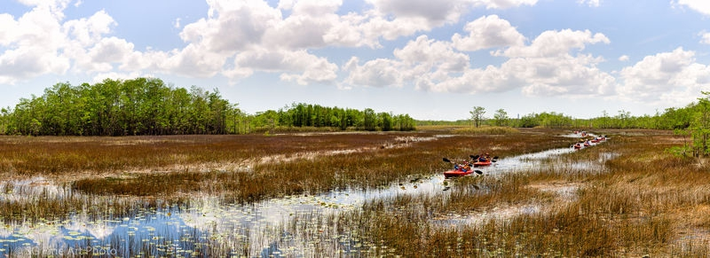 Grassy Waters Preserve in West Palm Beach