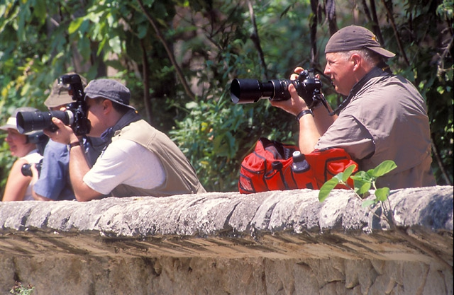 Nikonians at work
